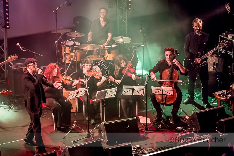 The Crook & the Dylan's + quatuor à cordes