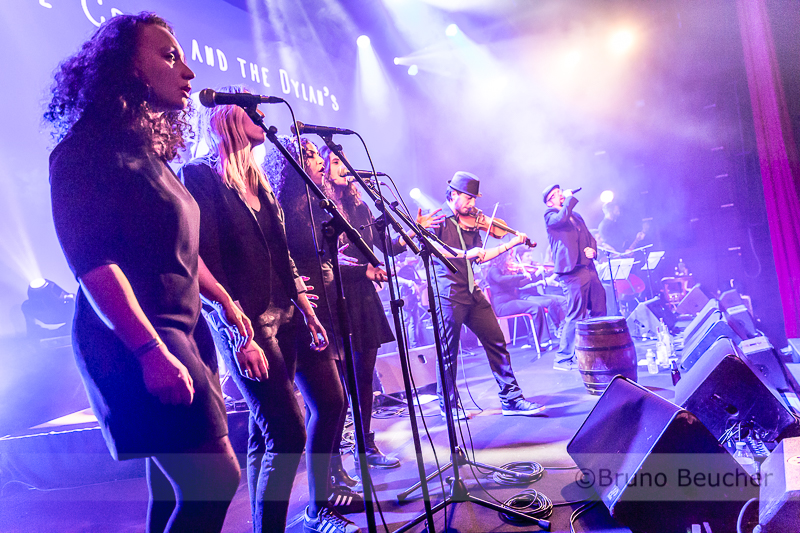 The Crook & the Dylan's + Choristes